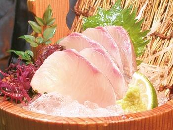 新鮮カンパチ刺し<br>Kanpachi Sashimi –  Amberjack