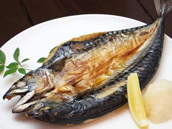 トロサバの開き<br>Grilled Mackerel